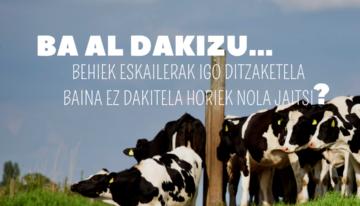 portada: imagen con vacas de fondo y la pregunta de la publicación