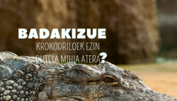 //texto imagen: ¿Sabéis que los cocodrilos no pueden sacar la lengua? Badakizue krokodiloek ezin dutela mihia atera?//